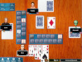 Hoyle Card Games 2012 for Windows Screen Shot #3
